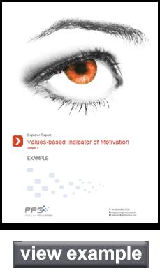 Values Based Indicator of Motivation sample report