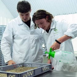 Using your degree: Natural Sciences