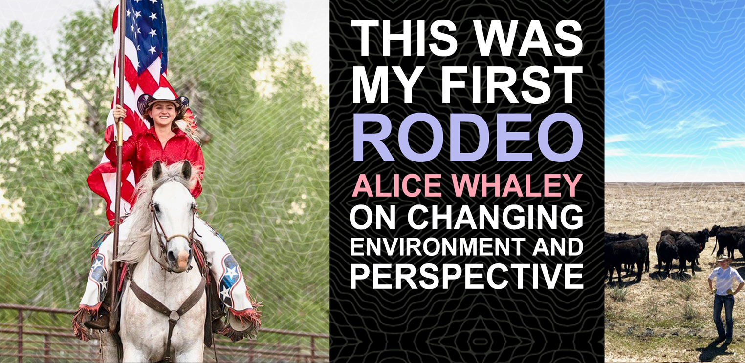 This was my first rodeo: Alice Whaley on changing environment and perspective