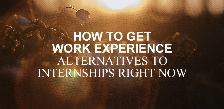 Alternatives to Work Experience This Year blog